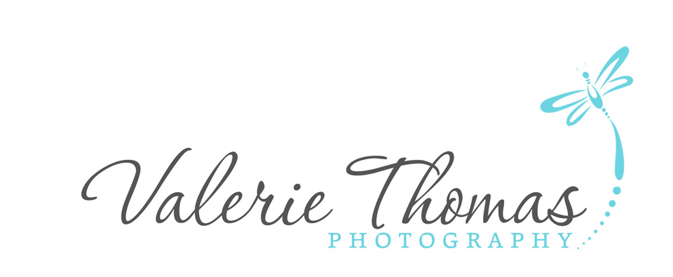 Family Photographer Logo Valerie Thomas Photography